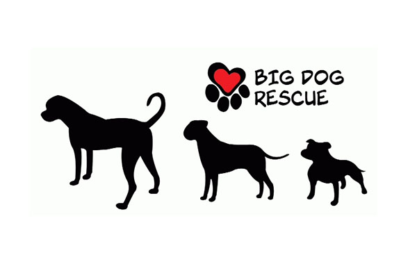 Big Dog Rescue Logo
