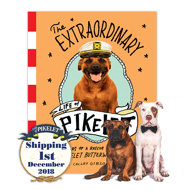 Extraordinary Life Of Pikelet Book Pawtographed By Pikelet And Patty Cakes