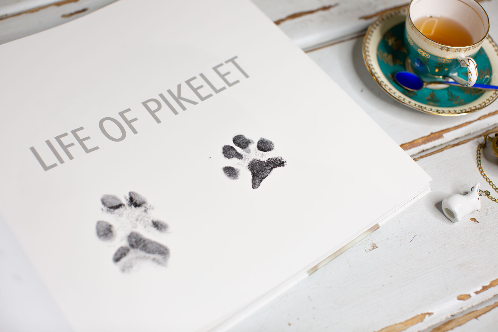 Life Of Pikelet Coffee Table Book Pawtographed By Pikelet And Patty Cakes